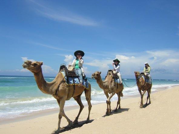 Pantai Geger Bali Surga yang Tersembunyi di Nusa Dua