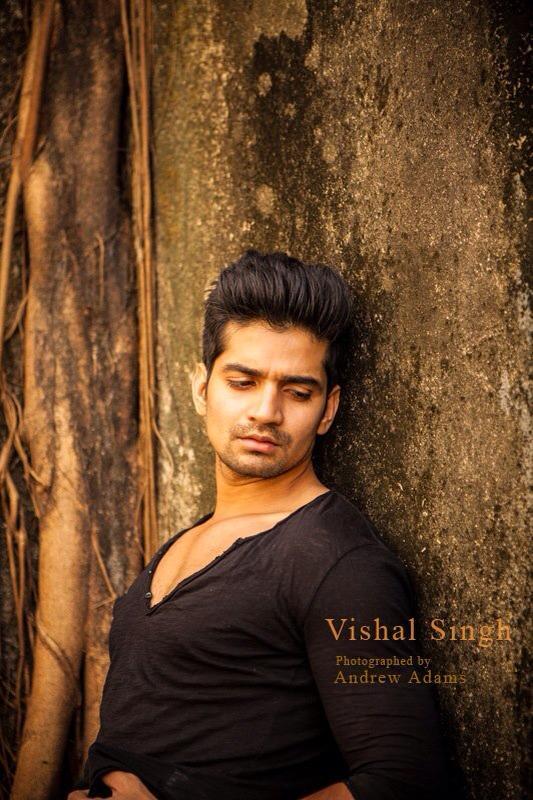 Dare to bare : Hot Indian TV Actors : Vishal Singh