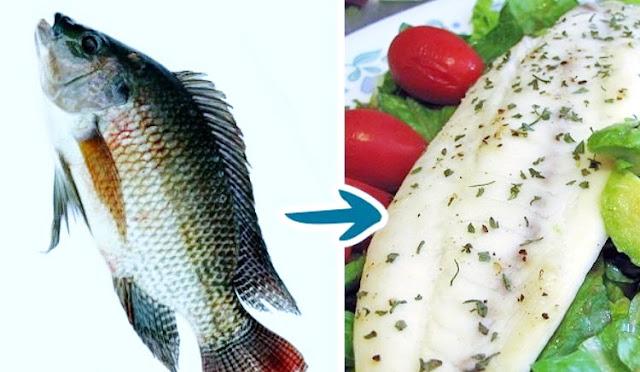 6 Jenis Ikan Ini Sebaiknya Tak Kamu Makan Meski Banyak Dijual di Pasar