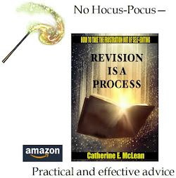 Revision is Process book