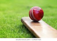 cricket /2020