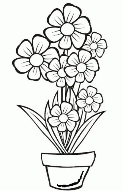 Mewarnai Gambar Bunga Untuk Anak Paud Tk Sd Kanalmu