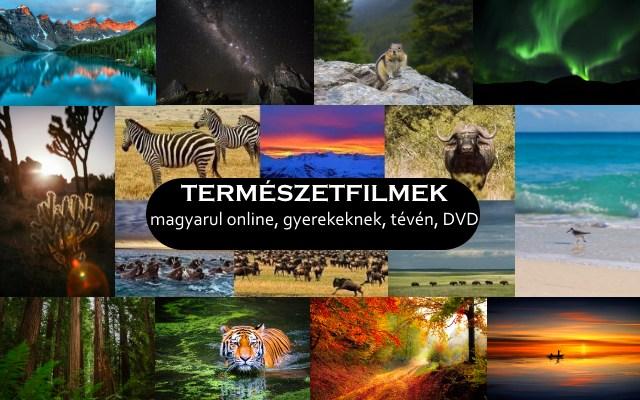 Természetfilmek magyarul online, gyerekeknek, tévén, DVD