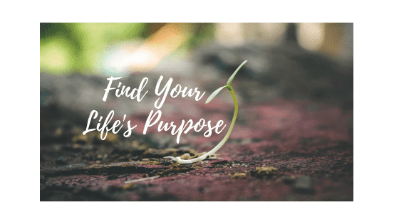 How To Find Life's Purpose