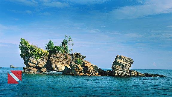 Foto Ekosistem Bawah Laut Raja Ampat