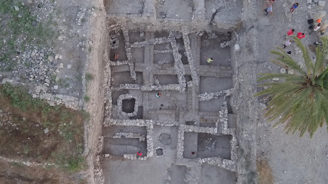 Tartar analyses reveals presence of exotic Asian spices in Bronze Age Levant