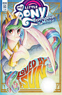 MLP Friendship is Magic #65 Comic Cover A Variant