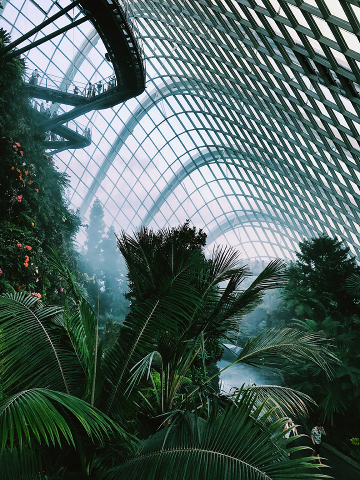 Cloud Forest Dome di Singapore