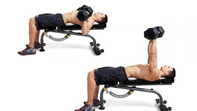 dumbbell bench press melatih otot dada
