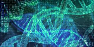How To Store Digital Data In DNA