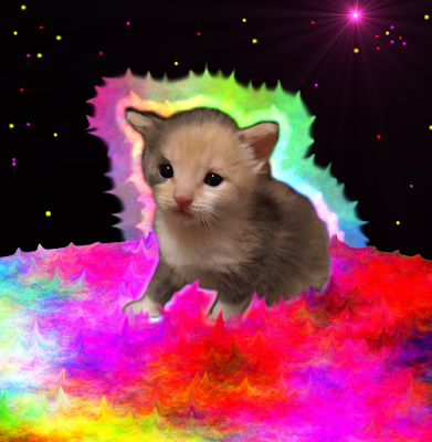 Kitten in space with aura