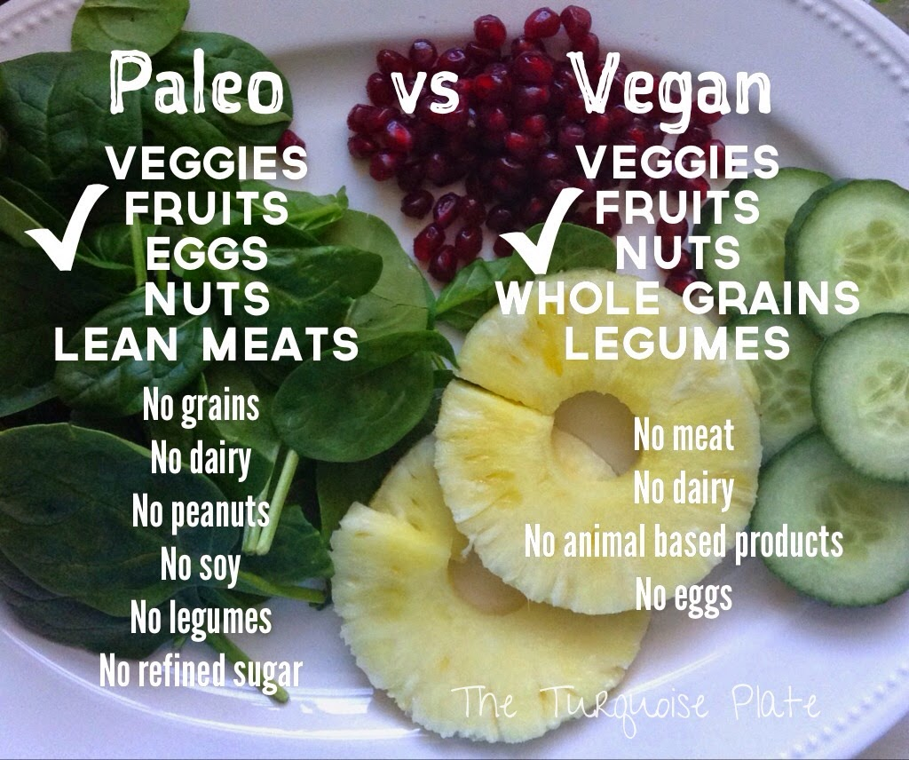 Trying to eat healthy? Confused about the terms paleo and vegan? Check out this blog post to find all the answers!