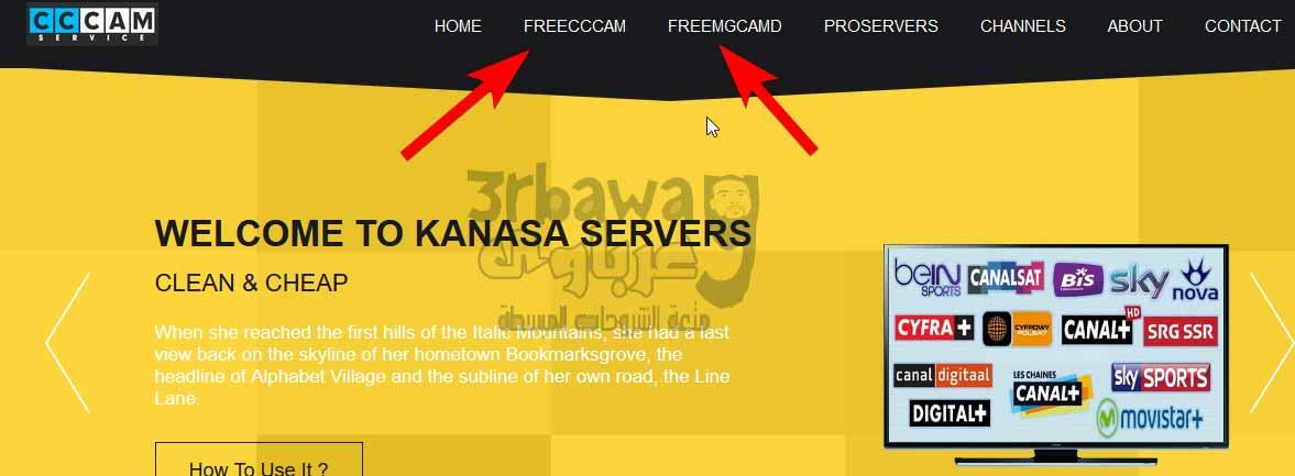 Free servers cccam mgcamd