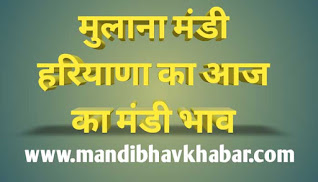 Aaj ka mandi bhav | Mullana sabji mandi bhav | Mullana mandi bhav today | हरियाणा मंडी भाव | Haryana mandi bhav today | mandibhavkhabar.com | mandibhavtoday.com | mandibhav.com | kisansamadhan.com | today market rates