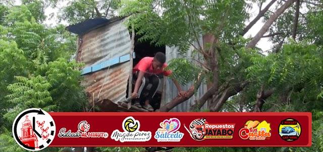 Video   Niño vive en una casita encima de un árbol