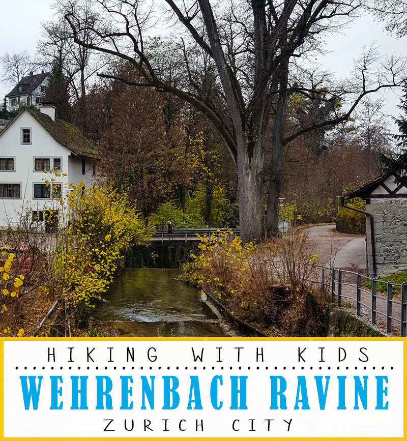 Forest walk by a river in the middle of Zurich, fun for kids and families. Picnic area and playground as well.