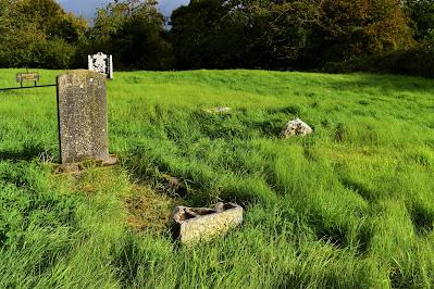 Saint Brigids Stone, Ballybuggy, Laois.