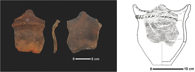 X-ray imaging of a beetle's world in 3600-year-old pottery from Kyushu, Japan