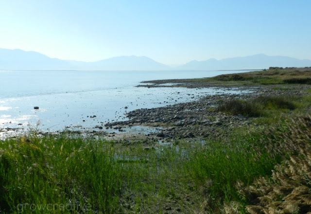 Lake shore of Utah Lake