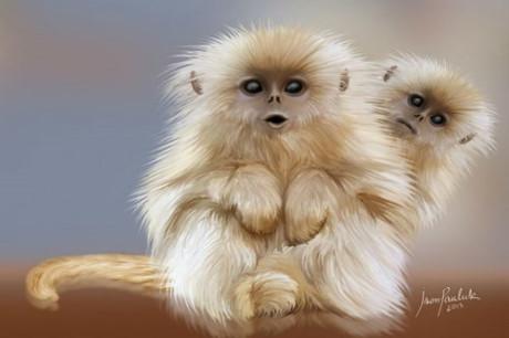 [Giải đáp] -  Mơ thấy hai con khỉ nghịch ngợm đòi vào nhà mình