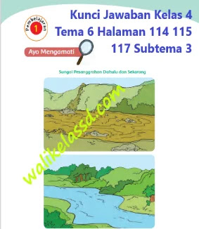 Kunci Jawaban Kelas 4 Tema 6 Halaman 114 115 117 Subtema 3 Pembelajaran 1 Giat Berusaha Meraih Cita-Cita