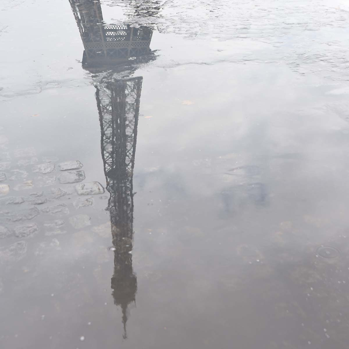 Eiffel Tower Reflected in Puddle by Jeanne Selep