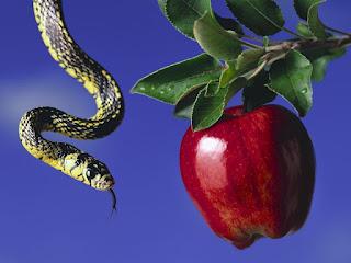 As serpentes tinham pernas antes da queda?