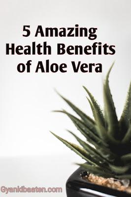 5 Amazing Health Benefits of Aloe Vera