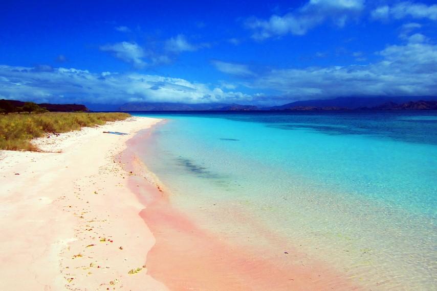 pesisir pantai pulau padar indonesia