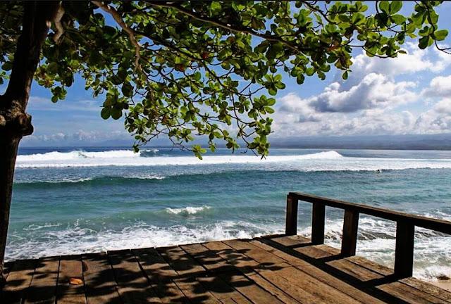 Keindahan Perpohonan Pantai