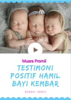 Program Anak Kembar