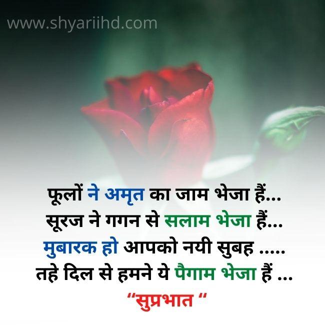 Good morning Shayari in Hindi   शुप्रभात शायरी