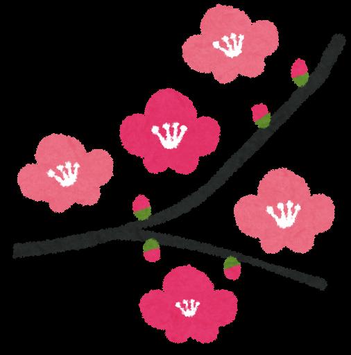 https://1.bp.blogspot.com/-u5ImJISPbKM/UgSL8JcxJmI/AAAAAAAAW4U/NdXA3S0DocY/s800/flower_ume.png