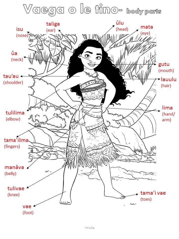 Samoan for Kids: Samoan body parts