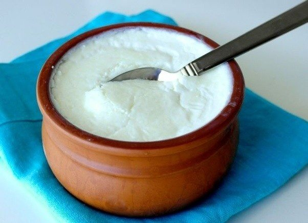 Top 8 Iodine Rich Foods curd