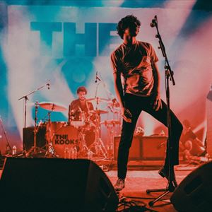 the kooks, liverpool, festival