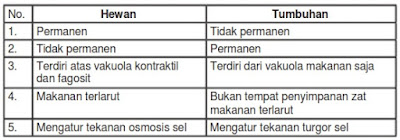 tabel sel