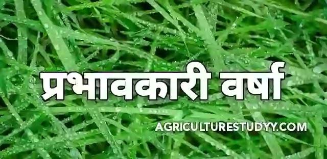 प्रभावी वर्षा (Effective rainfal in hindi)