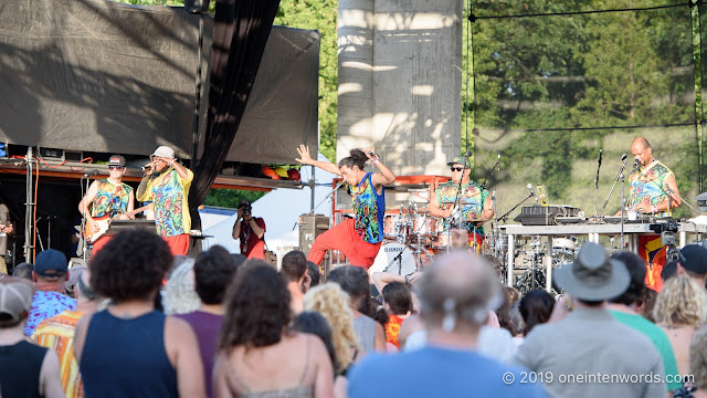 Systema Solar at Hillside Festival on Saturday, July 13, 2019 Photo by John Ordean at One In Ten Words oneintenwords.com toronto indie alternative live music blog concert photography pictures photos nikon d750 camera yyz photographer