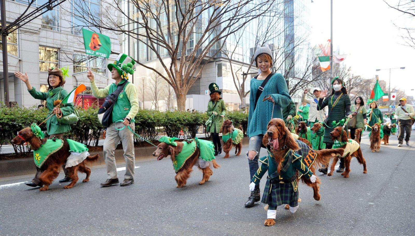 パレード参加される皆様、支援くださる関係者・スポンサーの皆様、そしてご取材いただく各報道機関の皆様、本年のセント・パトリックス・デー・パレード東京へ、より