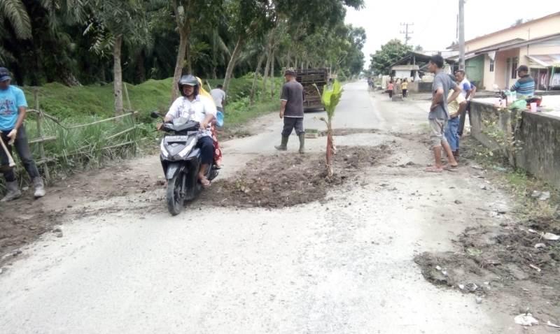 """""""2 Km Jalan Rusak"""" Warga Seikamah Asahan Protes, Tanam Pisang di Tengah Jalan"""