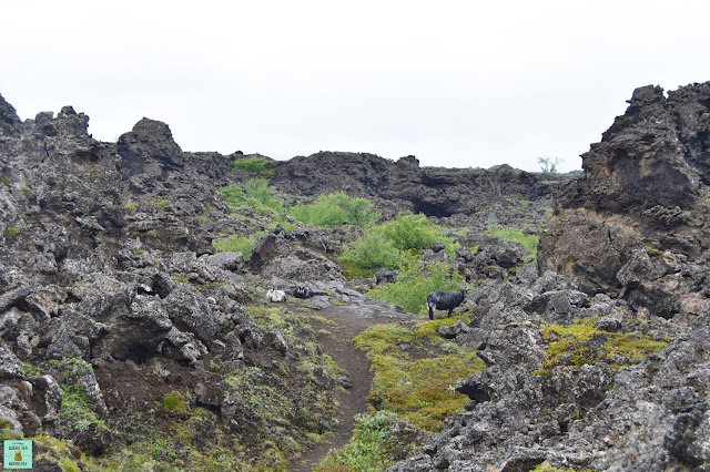 Dimmuborgir en Mývatn, Islandia