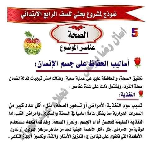 مشروع بحث عن الصحه للصف الرابع لميس نجلاء عبد الجواد 5