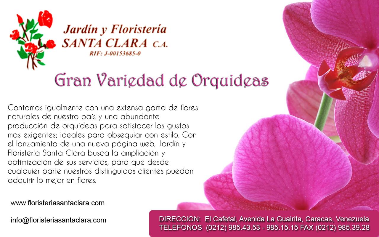 JARDIN Y FLORISTERIA SANTA CLARA C.A en Paginas Amarillas tu guia Comercial