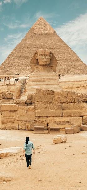 خلفية أثار مصر القديمة ابو الهول خلفه الأهرامات الأثرية
