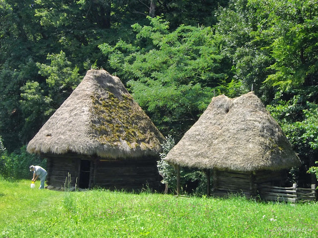 Muzeul Astra din Sibiu - case acoperite cu paie - blog Foto-Ideea