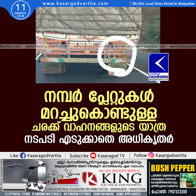 Kanhangad, Kasaragod, News, Lorry, Number plate, Goods vehicle service with hidden number plate, No action from officials