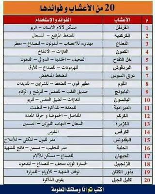 مع  الدكتور أحمد ابو النصرالوصايا العشرة لوزن المالى