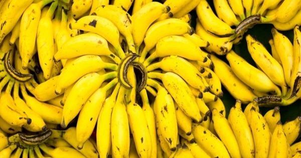 Banana (M. acuminata, M. balbisiana)