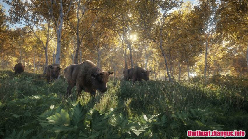 theHunter: Call of the Wild, theHunter: Call of the Wild free download, Tải Game TheHunter: Call of the Wild™ Full Crack, Tải game theHunter: Call of the Wild miễn phí